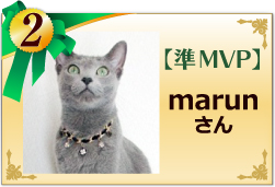 準MVP marunさん
